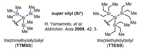 Protective04_supersilyl.jpg