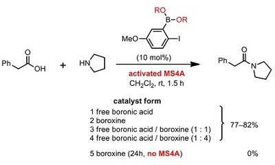 boronic acid or boroxine.jpg
