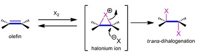 dihalogenation.jpg